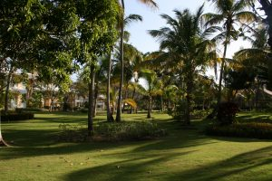 Grand Palladium Punta Cana 2