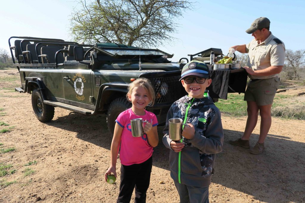 Kids Animal Safari