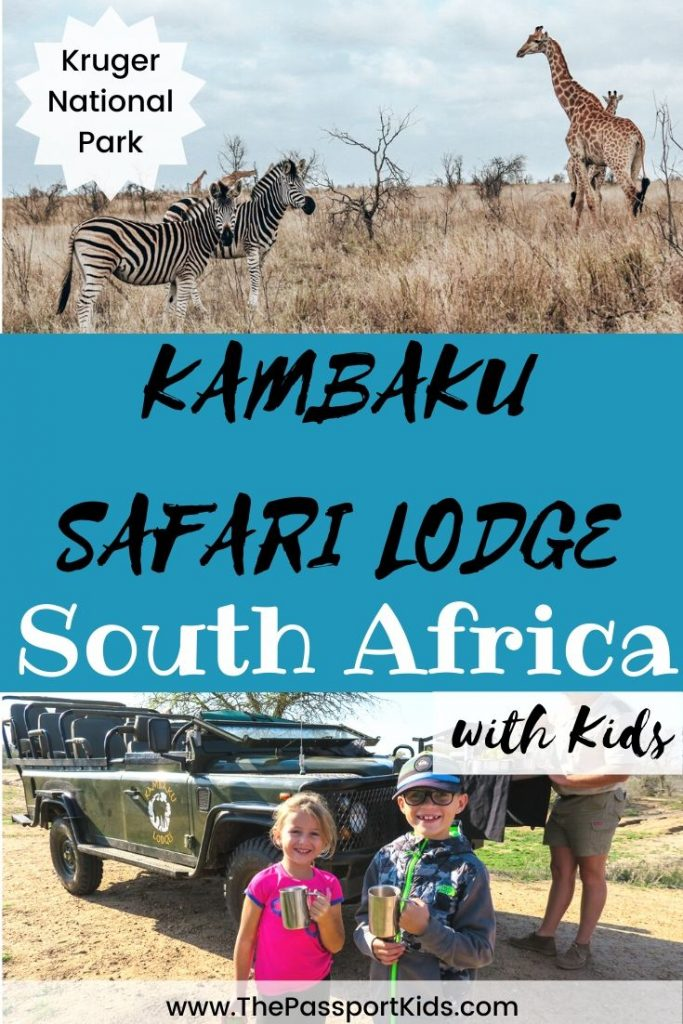 Kambaku Safari Lodge Review: Our overview of the safari lodge including details on the game drives, bush walks, accommodation, rooms, facilities, food, kids programs and much more! Details of our family Timbavati game reserve experience by Kruger National Park in South Africa. Also, some great tips about booking an African safari to save you money! #kambuka #krugernationalpark #timbavati #safari #africa #southafrica #familysafari #safarikids
